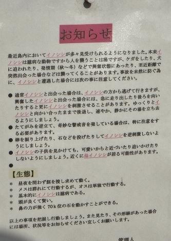1108nozakijuui4.jpg
