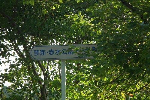 1109akamizu2.jpg