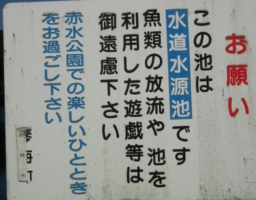 1109akamizu6.jpg