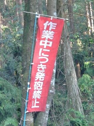 20110204seihi.jpg