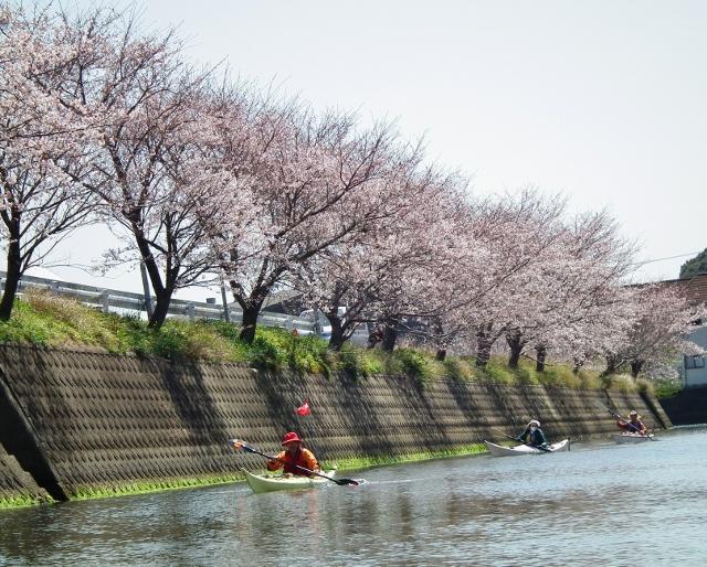 20120401matsuri1.jpg