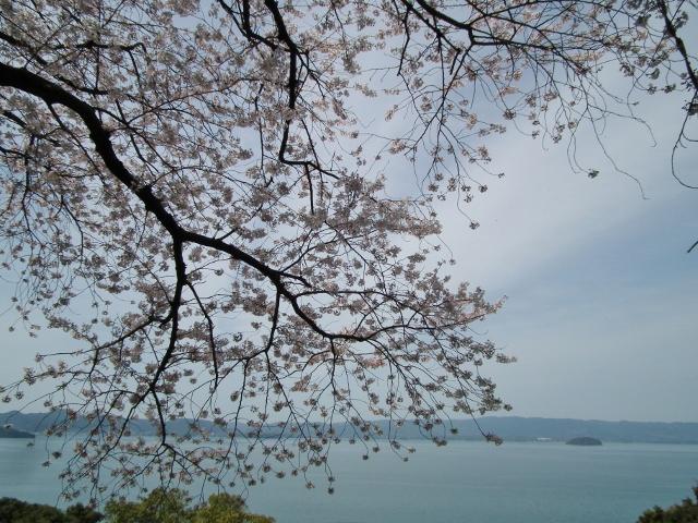 20120402wasansirou2.jpg