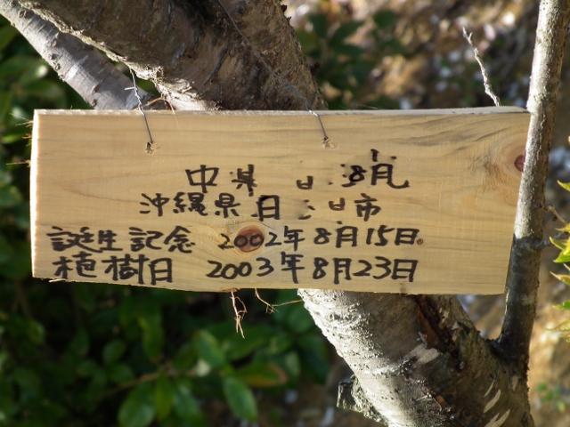201209isanouraaa3.jpg