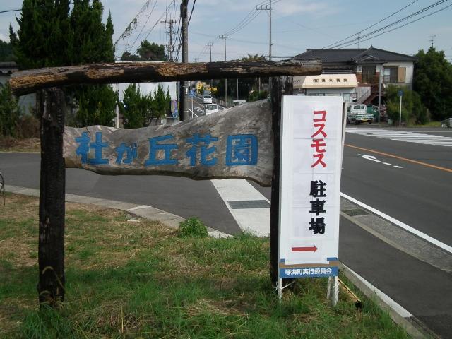 20121010a.jpg