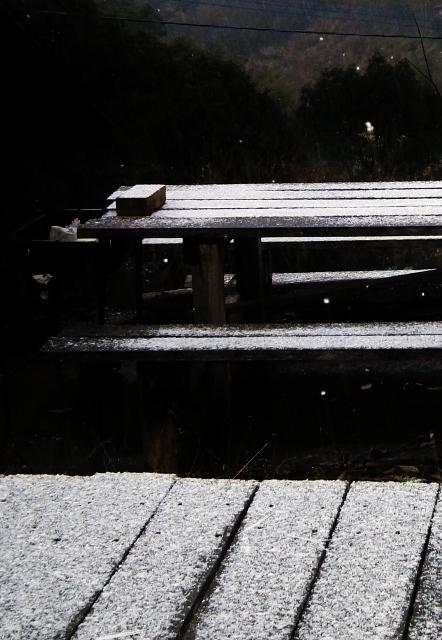 20121231yuki.jpg
