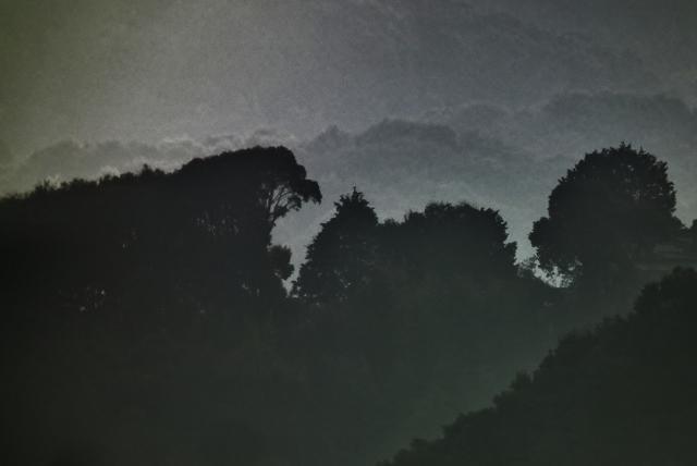 20130122c.jpg