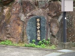 20130323sakura4 (640x480).jpg