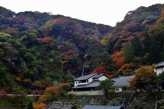 20141110yamagutiryokan3.jpg