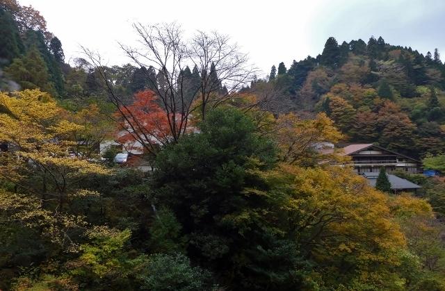 20141110yamagutiryokan4.jpg