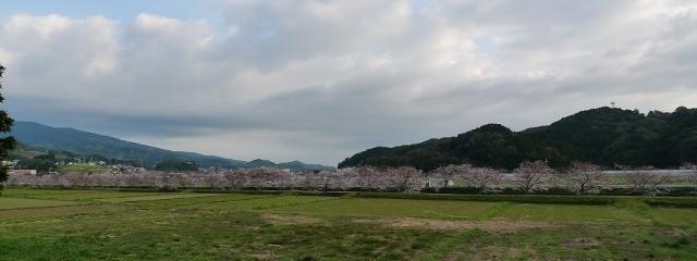 20150329tone1.jpg