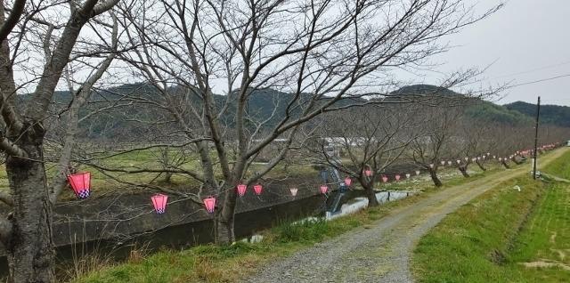 20170324tonegawa6 .jpg