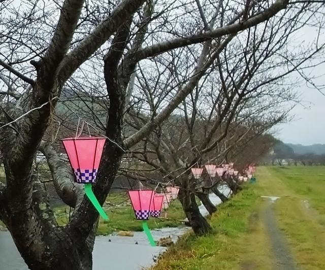 20170331tonegawa2 .jpg
